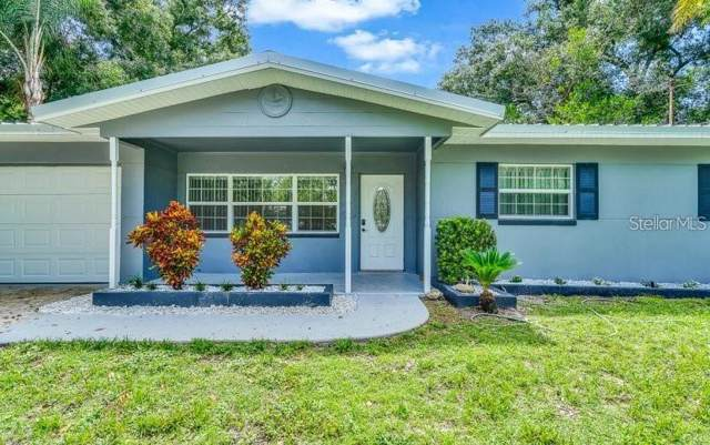 10231 N Valle Drive, Tampa, FL 33612 (MLS #T3213030) :: Medway Realty