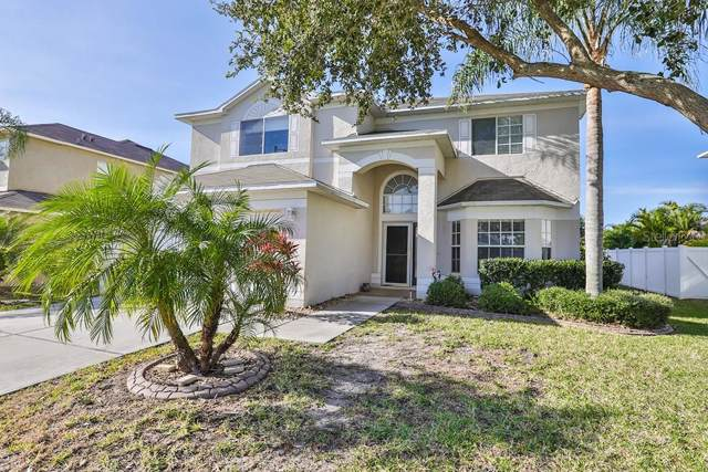 10904 Hoffner Edge Drive, Riverview, FL 33579 (MLS #T3213084) :: The Duncan Duo Team