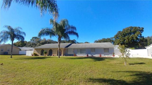 7218 Flowerfield Drive, Tampa, FL 33615 (MLS #T3213107) :: The Duncan Duo Team