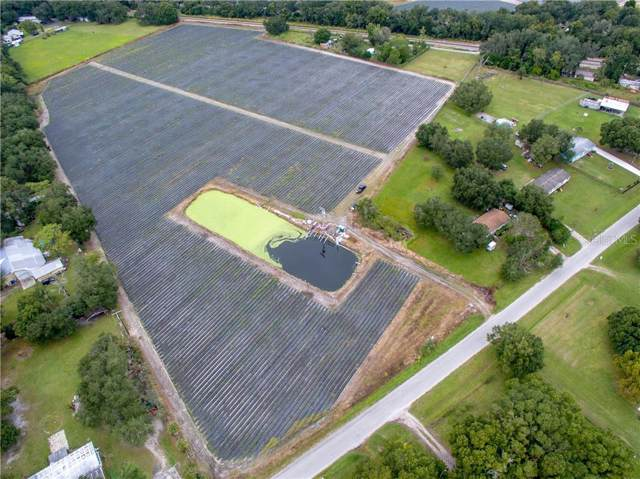 Address Not Published, Plant City, FL 33566 (MLS #T3213130) :: The Duncan Duo Team