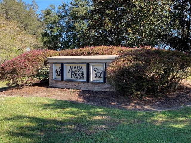 102 Alafia Estates Lane, Plant City, FL 33567 (MLS #T3213152) :: EXIT King Realty