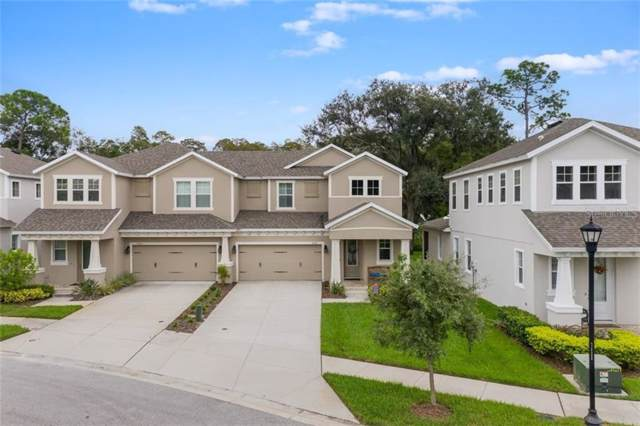 14701 Rocky Brook Drive, Tampa, FL 33625 (MLS #T3213200) :: Team Bohannon Keller Williams, Tampa Properties