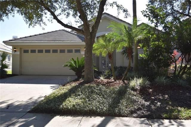 17652 Nathans Drive, Tampa, FL 33647 (MLS #T3213285) :: Team Bohannon Keller Williams, Tampa Properties