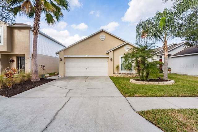 30327 Birdhouse Drive, Wesley Chapel, FL 33545 (MLS #T3213294) :: Burwell Real Estate
