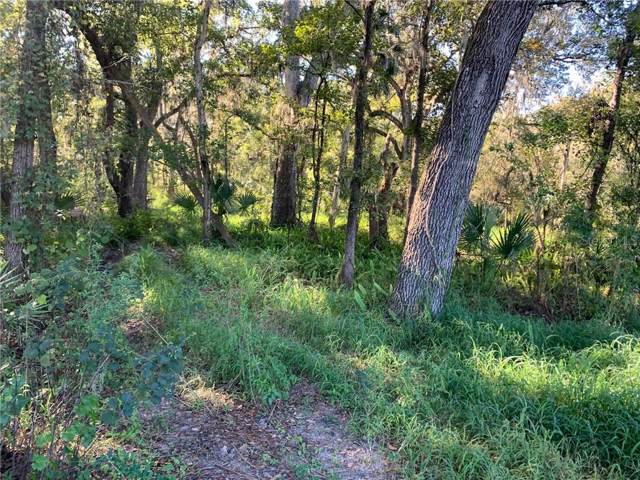 5001 State Road 60, Dover, FL 33527 (MLS #T3213300) :: The Duncan Duo Team