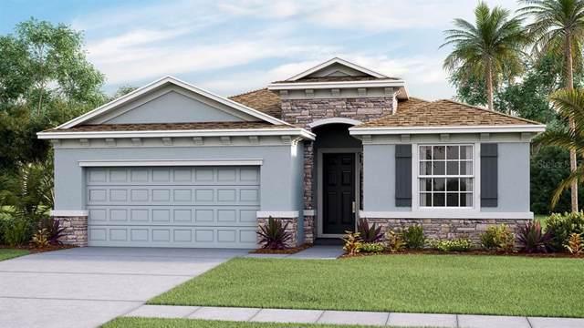 32871 Sand Creek Drive, Wesley Chapel, FL 33543 (MLS #T3213341) :: The Duncan Duo Team