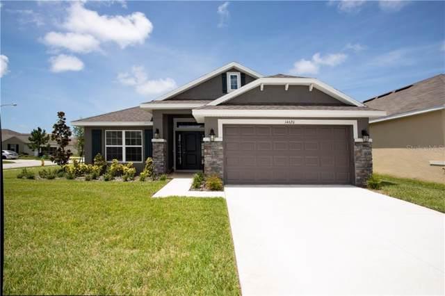14620 Potterton Circle, Hudson, FL 34667 (MLS #T3213362) :: Premium Properties Real Estate Services