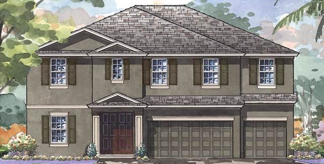 6402 Maiden Sea Drive, Apollo Beach, FL 33572 (MLS #T3213442) :: Team Bohannon Keller Williams, Tampa Properties