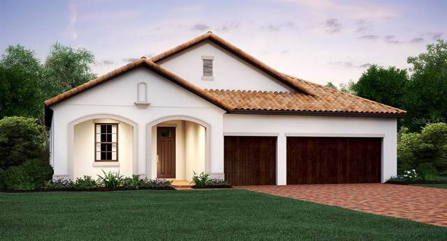 16805 Banner Shell Place, Wimauma, FL 33598 (MLS #T3213450) :: Premium Properties Real Estate Services