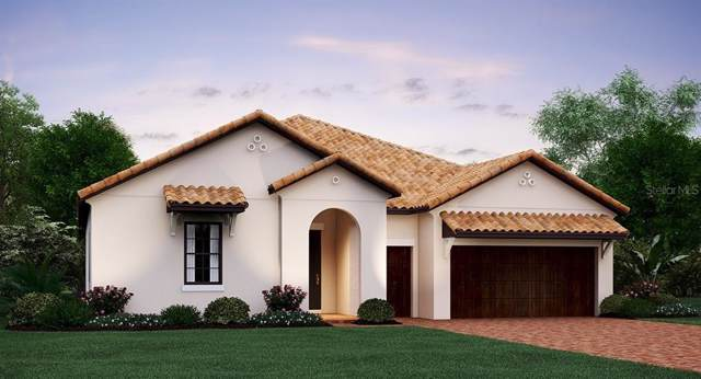 16801 Banner Shell Place, Wimauma, FL 33598 (MLS #T3213461) :: The Duncan Duo Team