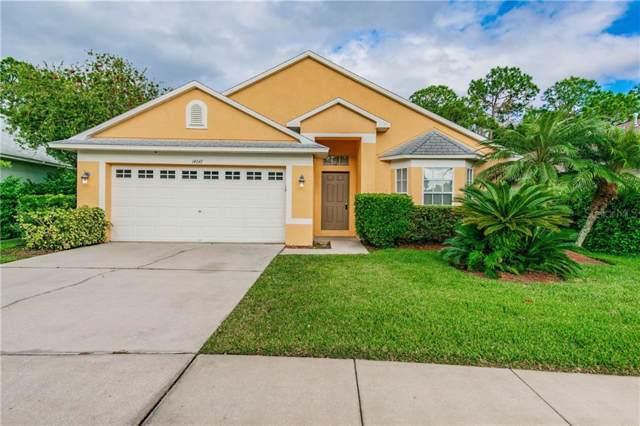 14647 Corkwood Drive, Tampa, FL 33626 (MLS #T3213514) :: Cartwright Realty