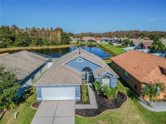 31149 Harthorn Court, Wesley Chapel, FL 33543 (MLS #T3213521) :: Bridge Realty Group
