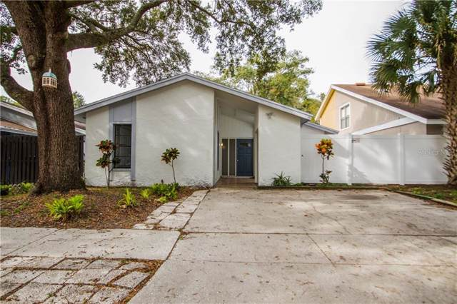 10512 Weeping Willow Place, Tampa, FL 33624 (MLS #T3213546) :: Carmena and Associates Realty Group