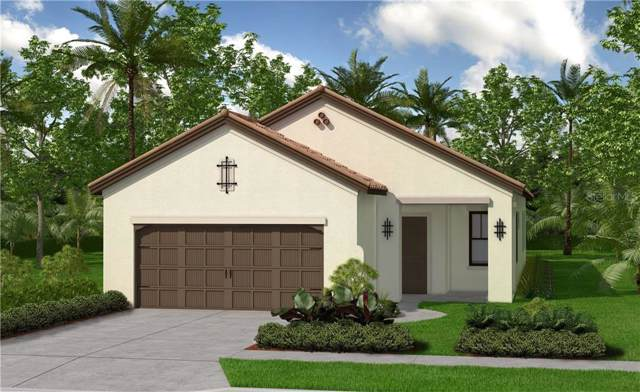 12705 Coastal Breeze Way, Bradenton, FL 34211 (MLS #T3213551) :: Burwell Real Estate