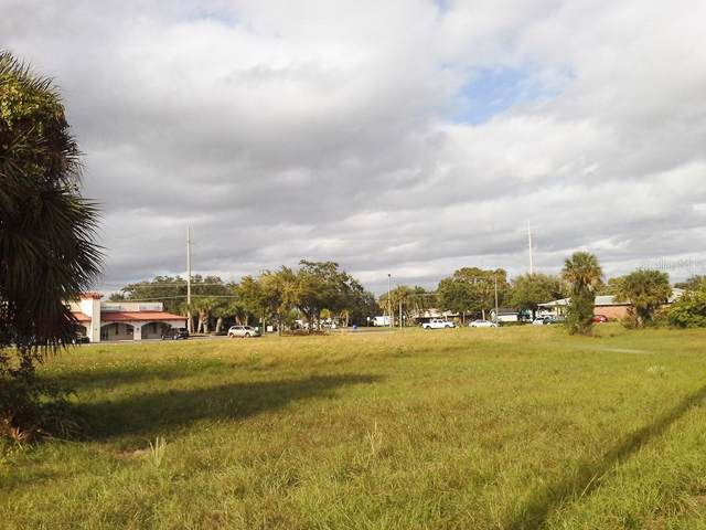 0 Hwy 41 Place, Apollo Beach, FL 33572 (MLS #T3213563) :: Team Bohannon Keller Williams, Tampa Properties