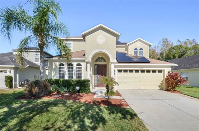 18449 Cypress Bay Parkway, Land O Lakes, FL 34638 (MLS #T3213614) :: The Duncan Duo Team