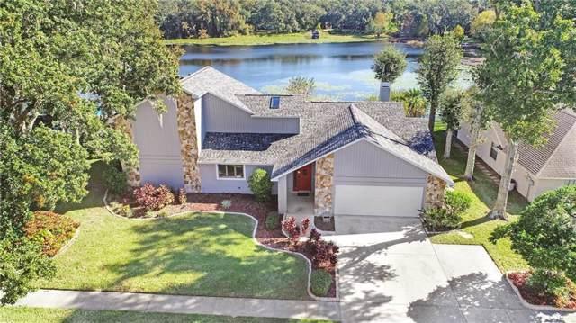 1017 Sylvia Lane, Tampa, FL 33613 (MLS #T3213667) :: Medway Realty