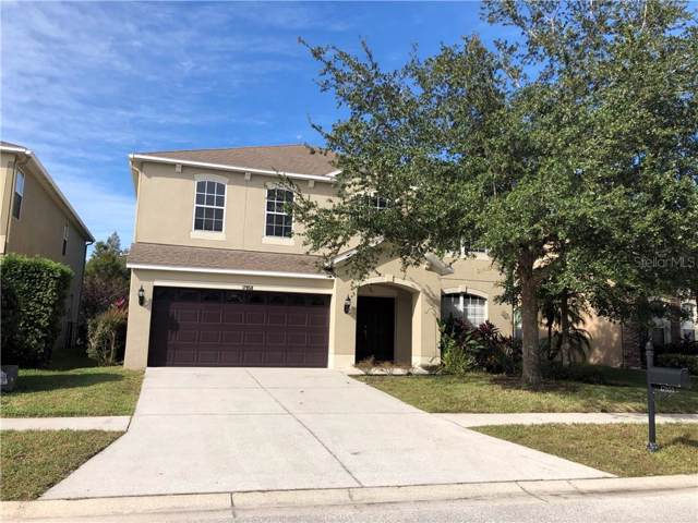 17858 Ayrshire Boulevard, Land O Lakes, FL 34638 (MLS #T3213699) :: Team Bohannon Keller Williams, Tampa Properties