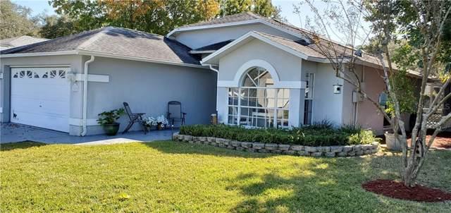 10830 Brookhaven Drive, New Port Richey, FL 34654 (MLS #T3213703) :: 54 Realty