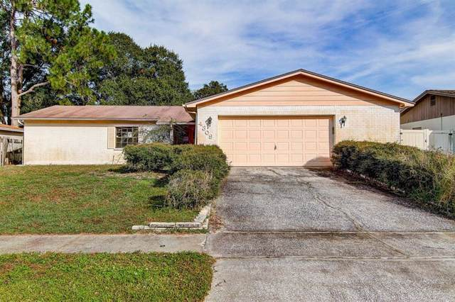 4309 Hollow Hill Drive, Tampa, FL 33624 (MLS #T3213728) :: Premium Properties Real Estate Services