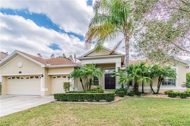 16048 Dakota Drive, Odessa, FL 33556 (MLS #T3213747) :: Team Bohannon Keller Williams, Tampa Properties
