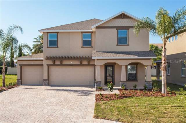 5918 S Sterling Avenue, Tampa, FL 33611 (MLS #T3213799) :: The Duncan Duo Team