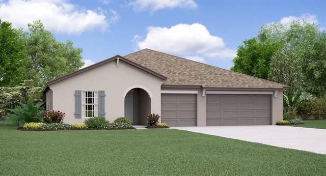 913 Timeless Moss Drive, Ruskin, FL 33570 (MLS #T3213805) :: Team Bohannon Keller Williams, Tampa Properties