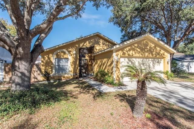 12909 Longcrest Drive, Riverview, FL 33579 (MLS #T3213813) :: Team Bohannon Keller Williams, Tampa Properties