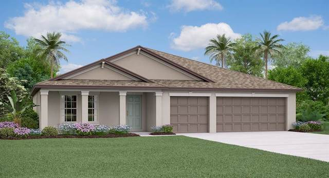 915 Timeless Moss Drive, Ruskin, FL 33570 (MLS #T3213820) :: Team Bohannon Keller Williams, Tampa Properties