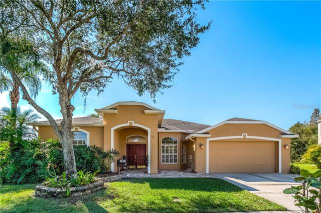 1904 Tangledvine Drive, Wesley Chapel, FL 33543 (MLS #T3213833) :: Bridge Realty Group