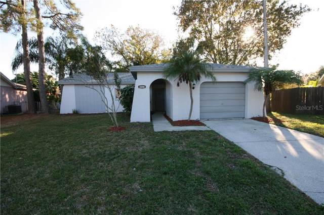 2208 Hill Road, Palm Harbor, FL 34683 (MLS #T3213899) :: Bridge Realty Group