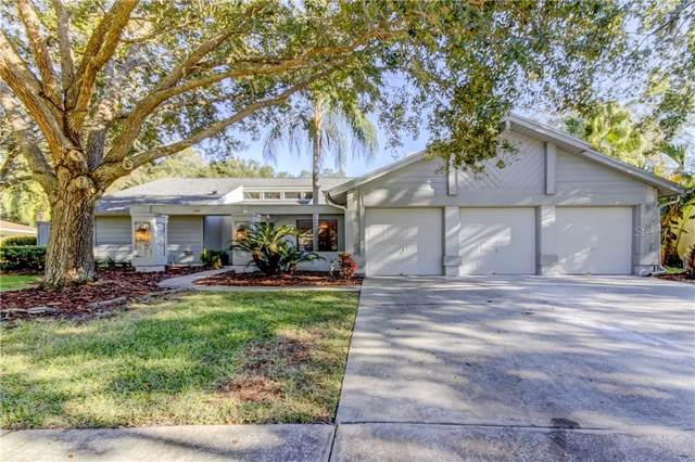 5039 Barrowe Drive, Tampa, FL 33624 (MLS #T3213906) :: Premium Properties Real Estate Services