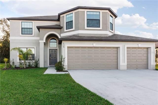 6563 Paden Wheel Street, Zephyrhills, FL 33541 (MLS #T3213908) :: Lovitch Realty Group, LLC
