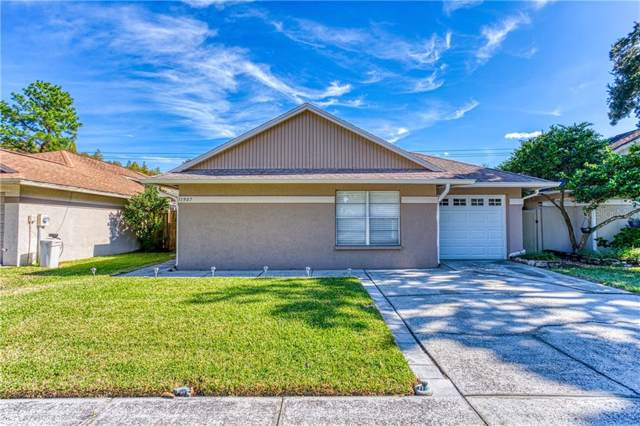 11907 Hickorynut Drive, Tampa, FL 33625 (MLS #T3213911) :: Carmena and Associates Realty Group
