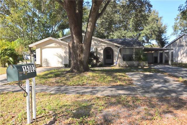 16002 Saddle Creek Drive, Tampa, FL 33618 (MLS #T3213930) :: Team Bohannon Keller Williams, Tampa Properties