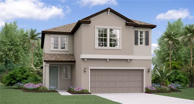 4101 Cadence Loop, Land O Lakes, FL 34638 (MLS #T3213940) :: The Duncan Duo Team