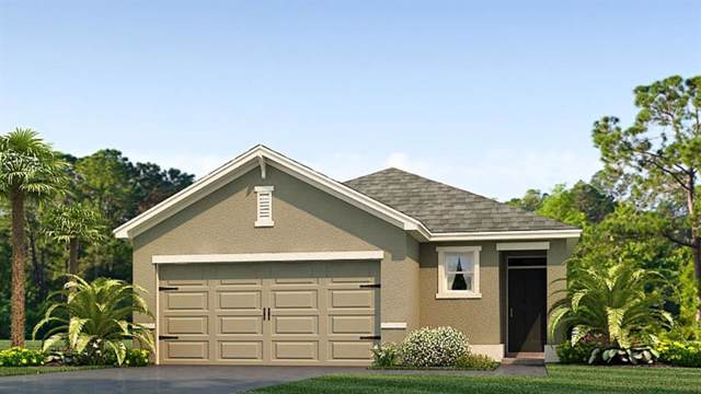 10003 Merry Fawn Court, Sun City Center, FL 33573 (MLS #T3213973) :: The Duncan Duo Team
