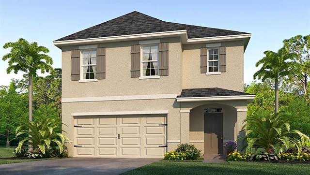 10009 Merry Fawn Court, Sun City Center, FL 33573 (MLS #T3213976) :: The Duncan Duo Team