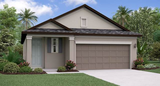 4199 Cadence Loop, Land O Lakes, FL 34638 (MLS #T3213982) :: The Duncan Duo Team