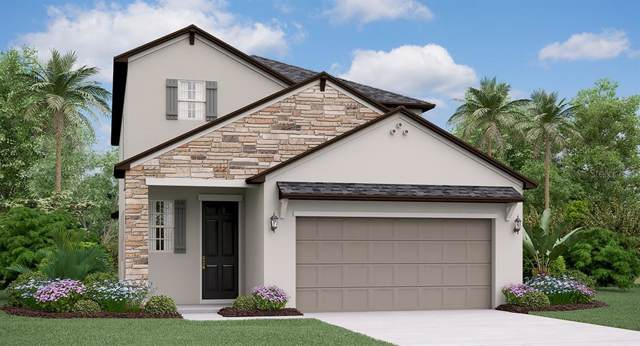 4117 Cadence Loop, Land O Lakes, FL 34638 (MLS #T3213996) :: Premier Home Experts
