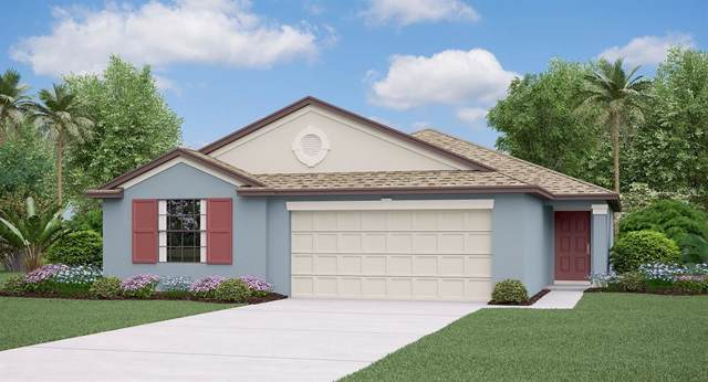 3290 Lytton Hall Drive, Zephyrhills, FL 33540 (MLS #T3214005) :: Bustamante Real Estate