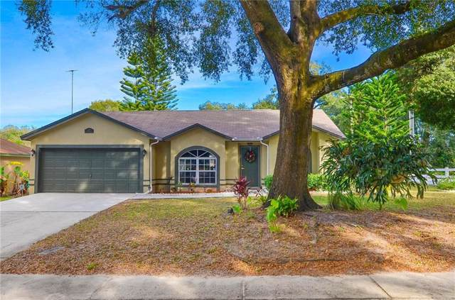 425 Carriage Crossing Circle, Brandon, FL 33510 (MLS #T3214027) :: The Duncan Duo Team
