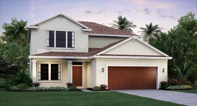 11452 Freshwater Ridge Drive, Riverview, FL 33579 (MLS #T3214084) :: The Duncan Duo Team