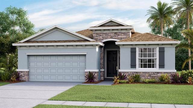 16620 Goose Ribbon Place, Wimauma, FL 33598 (MLS #T3214102) :: The Duncan Duo Team