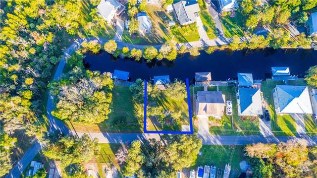 5675 S Sea Otter Path, Homosassa, FL 34448 (MLS #T3214113) :: Cartwright Realty