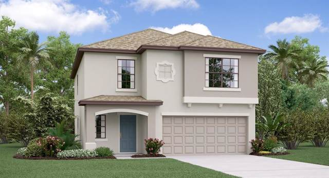11407 Sage Canyon Drive, Riverview, FL 33578 (MLS #T3214134) :: The Duncan Duo Team