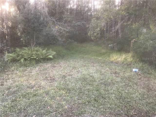 0 Country Haven Drive, Lakeland, FL 33809 (MLS #T3214224) :: The Duncan Duo Team