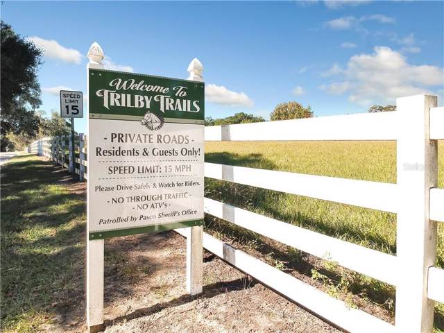 Paso Fino Way, Dade City, FL 33523 (MLS #T3214269) :: Griffin Group