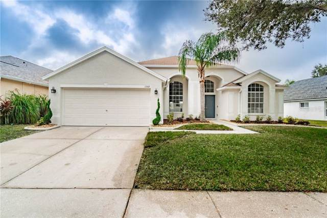 13519 Staghorn Road, Tampa, FL 33626 (MLS #T3214306) :: Griffin Group
