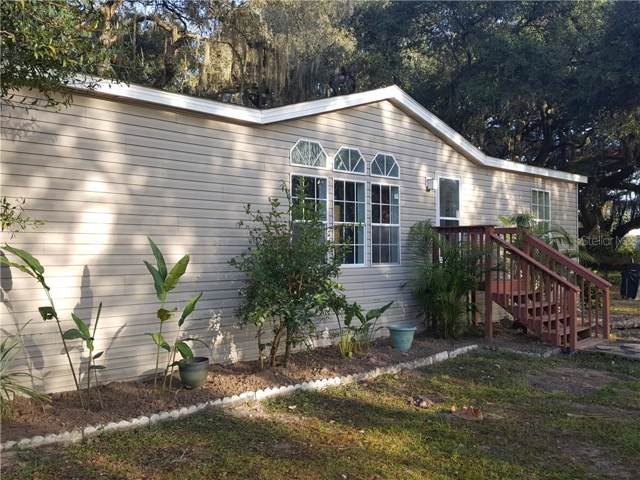 3119 Tina Marie Drive, Wesley Chapel, FL 33543 (MLS #T3214321) :: The Robertson Real Estate Group